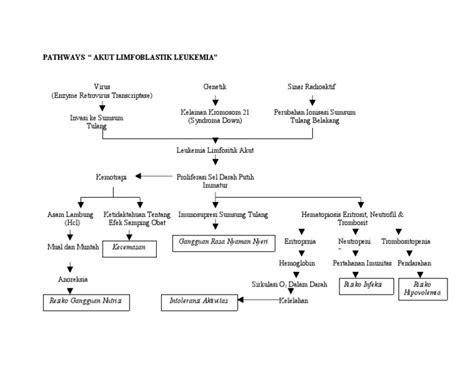 pathway acute limfoblastik leukemia