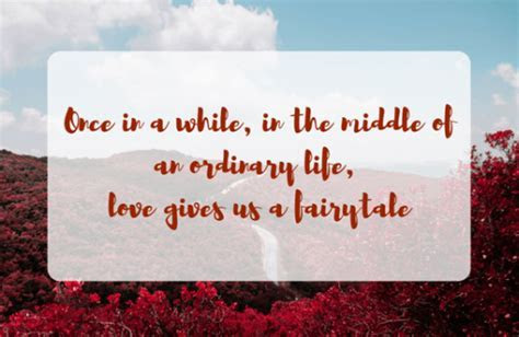 Indian Wedding Quotes   Magical Quotes to Express Your