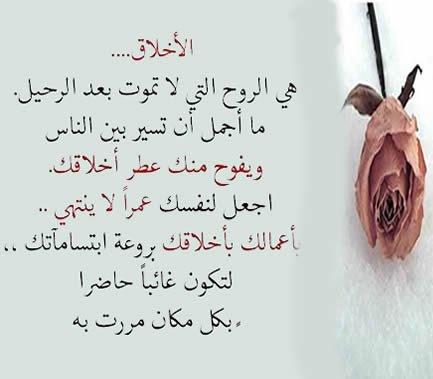 حمدي محمد Hamdimohamm1 Twitter