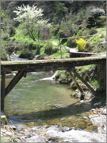 077 simple bridge over the river