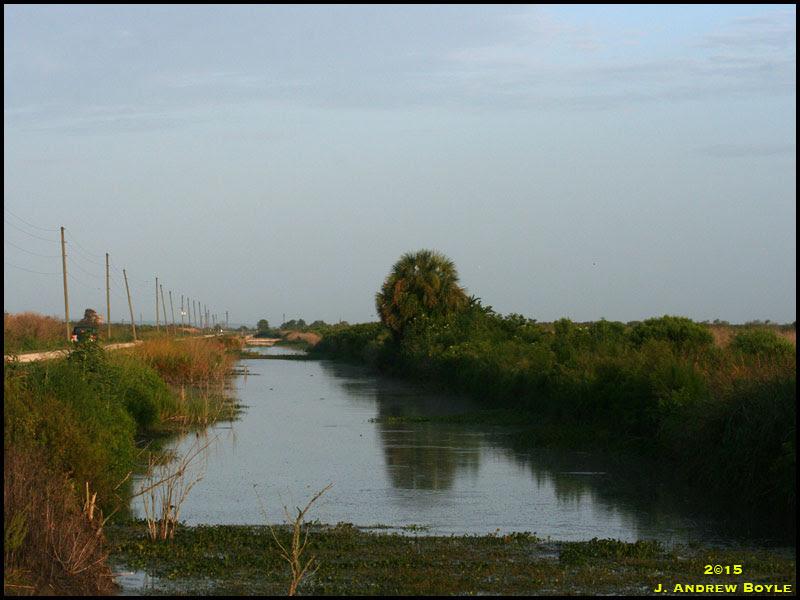 Lake Apopka North Shore Drive