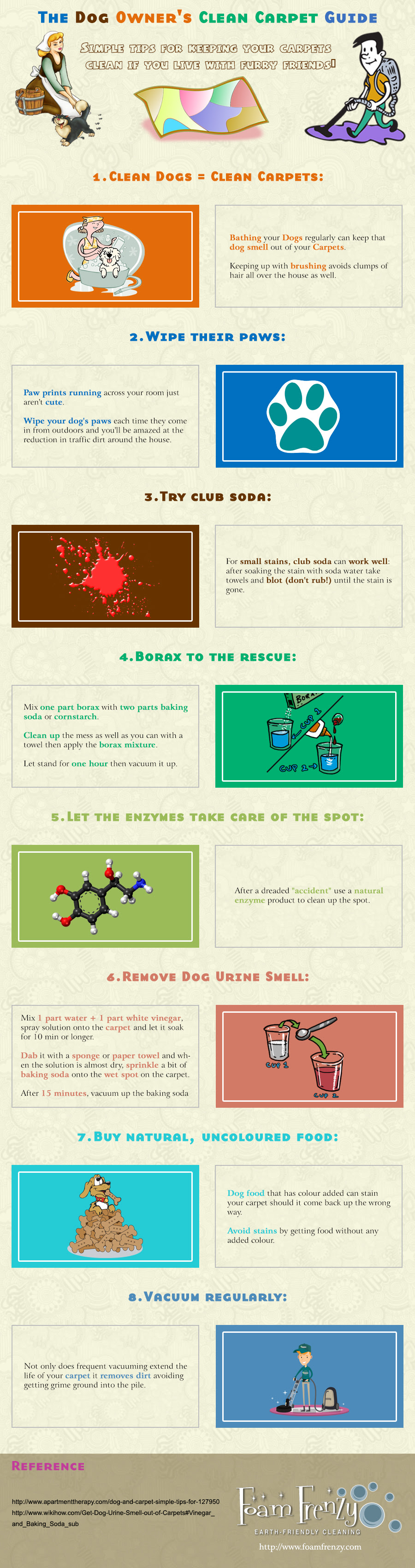 Dog Owner's Carpet Cleaning Guide infographic