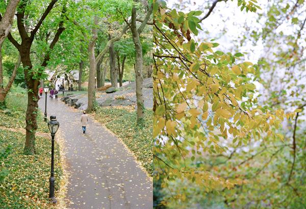 NYCblog21.jpg