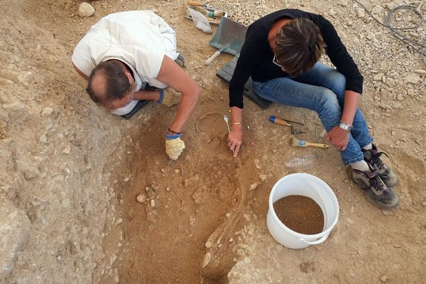 Esqueleto encontrado na França (Foto: Boris Horvat/AFP)