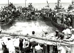Copejo do atum nas armações de Tavira.jpg
