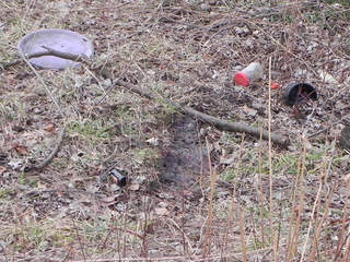 Dead dog found in Portage County_20130306135421_JPG