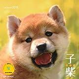 カレンダー2012 子柴 (Yama-Kei Calendar2012)