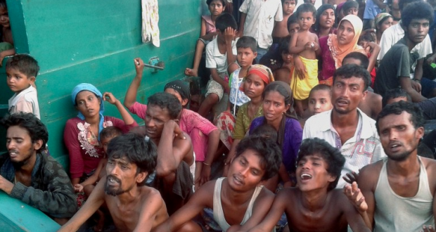 Syrian Rebels to Rohingya: Invitation for 500 Families Trapped at Sea
