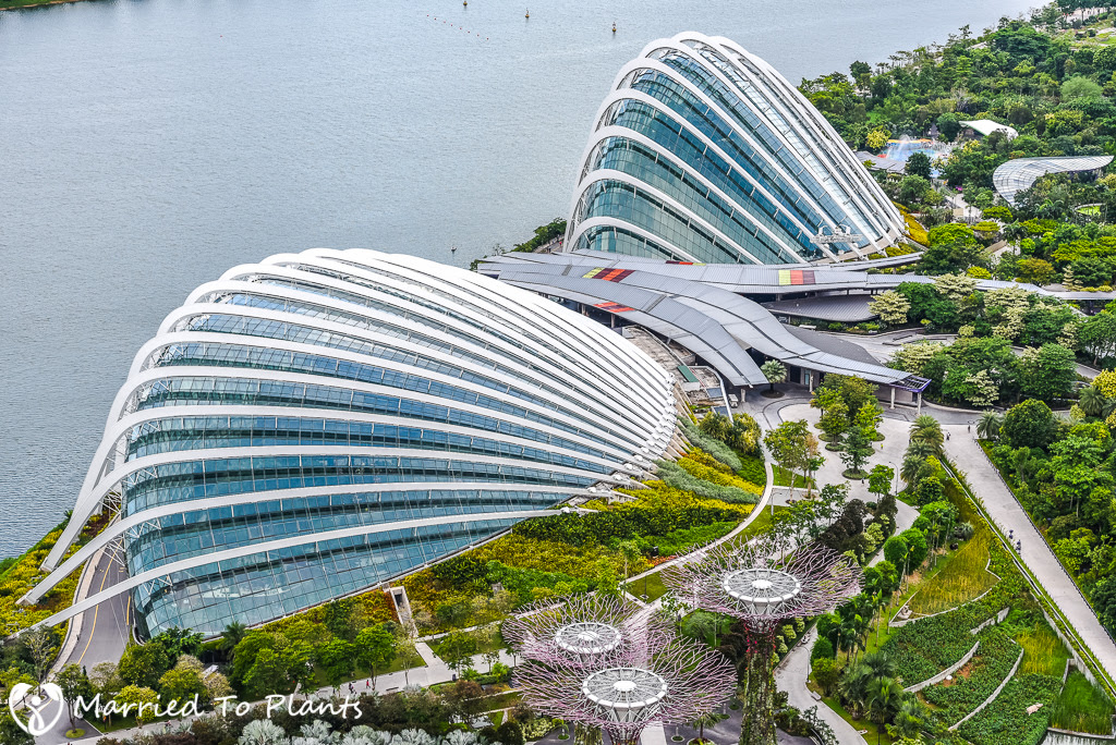 gardens by the bay domes_