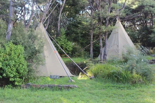 Camping SolScape