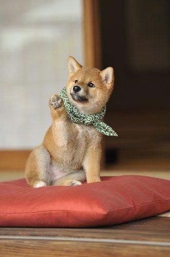 【スマホ壁紙】待ち受け画像【犬好き専用】 NAVER まとめ - 犬 壁紙 スマホ