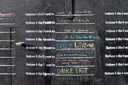 Before I Die I Want To (courtesy of Candy Chang)