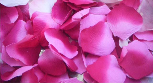 Petalos Boda Allium Floristas