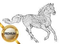 Malvorlagen Pferde und Ponys, Stute und Fohlen Esel