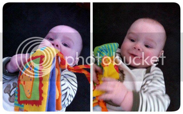 Baby isst ein Buch