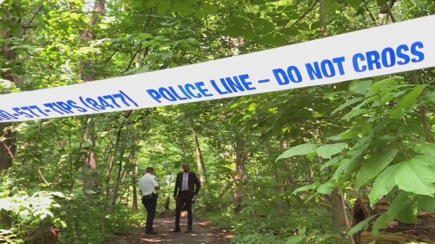 3 Women Targeted In Disturbing Crimes In Inwood Park