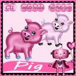 Pig Script