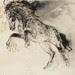 馬12.粉彩、木炭、紙本.57x40.5cm.2012