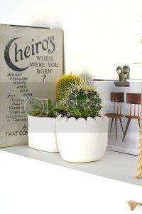 diy clay planters, burkatron, craft, uk, blogger