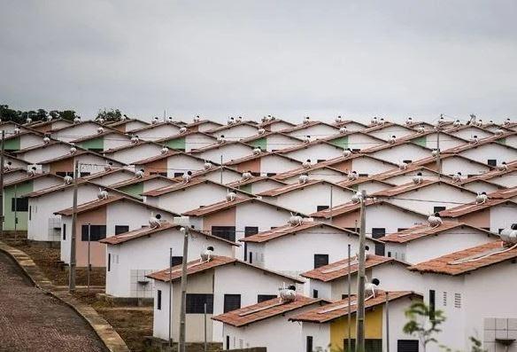 MINHA CASA, MINHA VIDA: 40% das obras que serão interrompidas ficam no Nordeste