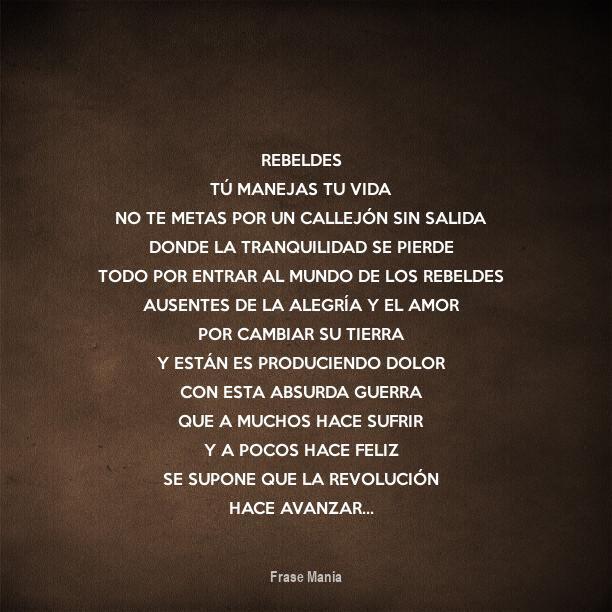 Cartel Para Rebeldes Tu Manejas Tu Vida No Te Metas Por Un Callejon