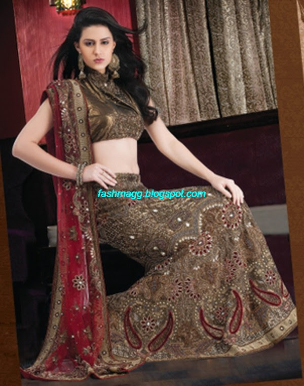 Indian Beautiful Bridal Lehenga Choli Dress For Brides