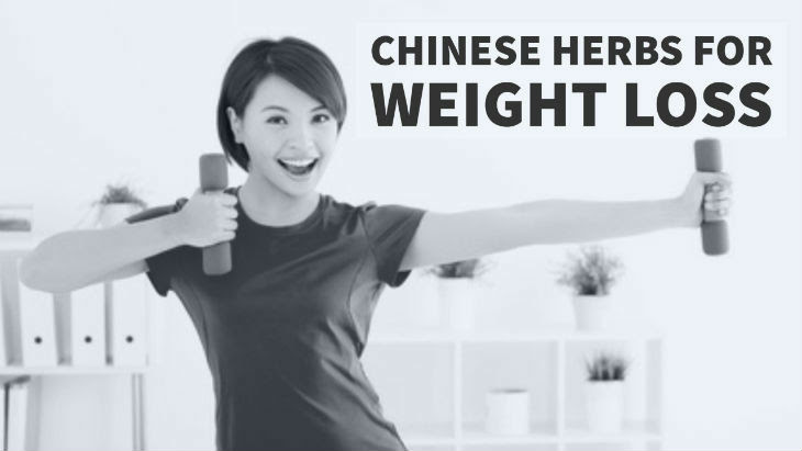 Chinese Herbs for Weight Loss - How To Lose Weight With ...