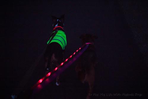 Night Run-8043