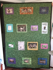 Holly's Mom's Quilt