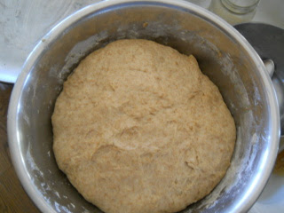 Simple Bread Rolls Dough After Rising