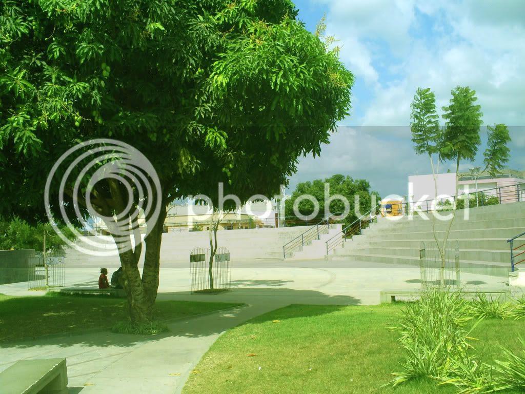 Área arborizada da Praça central