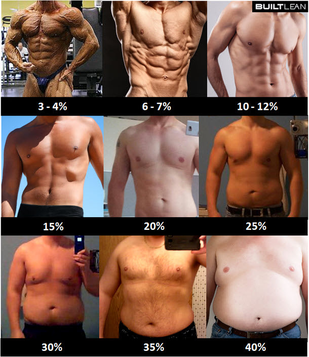 bodybuilding bulking body fat percentage