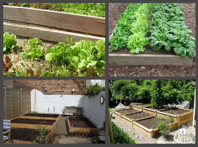 of raised bed gardening