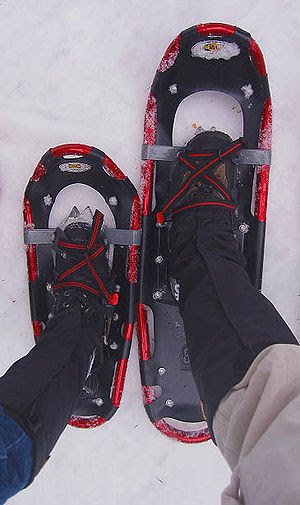 Two different sizes of modern snowshoes