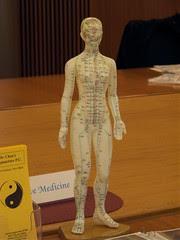 Wellness Fair 2009-11 - Alternative Medicine