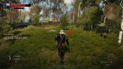 Witcher 3 perderam bens tesouro caça 1