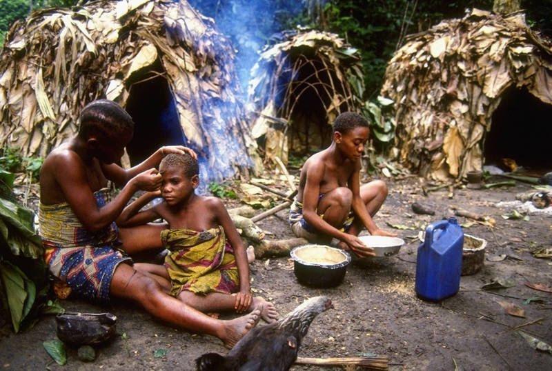 2. В Республике Конго живут пигмеи – самые низкорослые люди в мире архитектура, африка, интересно, как живут люди, племена Африки, фото