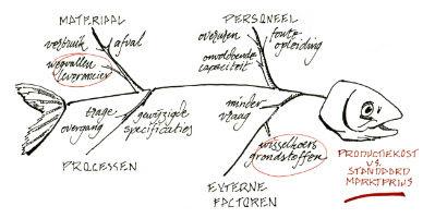 Oorzaak Analyse Visgraatdiagram Sparx Kwaliteitsmanagement