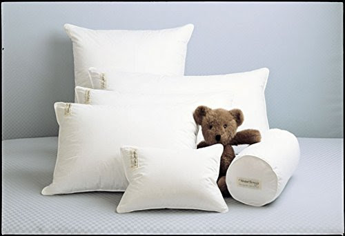 You Can Buy Fine White Goose Down Pillow White European Square ...