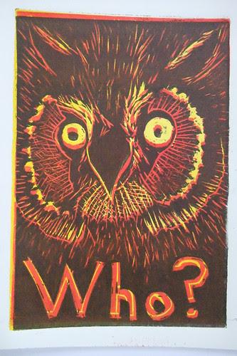 owl questions