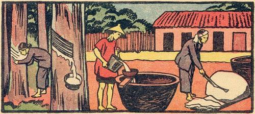 recolte caoutchouc