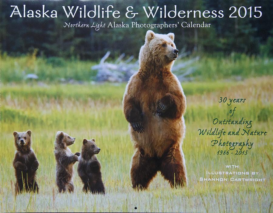 2015 Alaska Wilderness and Wildlife Callender  Photo Blog  Niebrugge