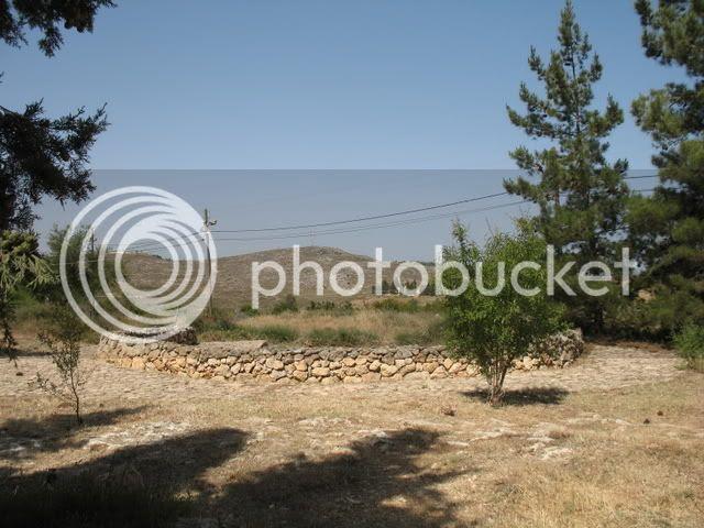 At Tel Shiloh 1