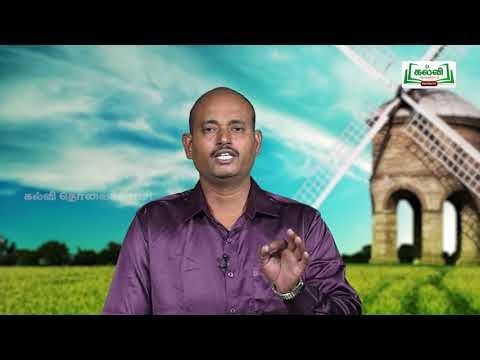 வகுப்பு 10 தமிழ் 2 இயற்கை சுற்றுச்சூழல் கவிதைப் பேழை காற்றே வா Kalvi TV