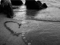 Poemas De Decepcion Reflexiones De Amor Y Poemas De Amor Frases