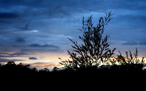 IMG 7490 Sunset over Glenugie
