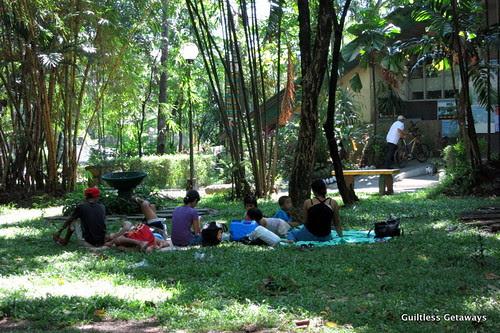 Guiltless getaways ninoy aquino parks and wildlife center for Koi pond quezon city