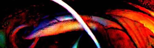 poems 2011 - jim leftwich 030b by jim leftwich