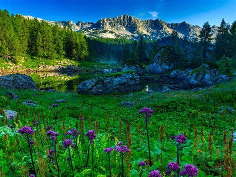 double lake  triglav national park slovenia