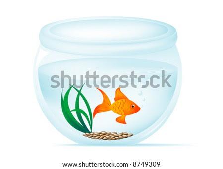 goldfish bowl. stock vector : Fish owl